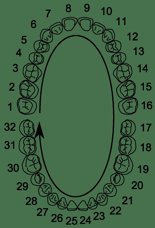 15E74BFA-B20B-4B36-BA76-EED408321328