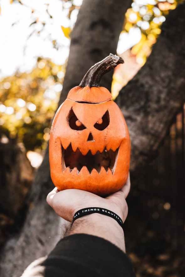 photo of jack o lantern on person s hand